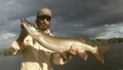 click here to check out Wayne Pellet's 40 inch musky